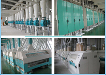 Wheat Milling Plant